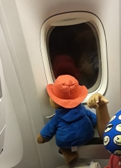 Paddington Looking Home by Tickets for Four