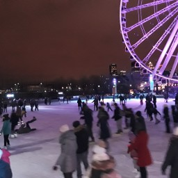 A Winter Weekend in Montreal, QC