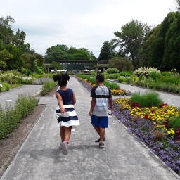 What to do in Montreal with Kids
